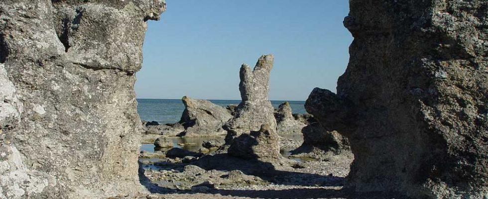 Färja till Gotland